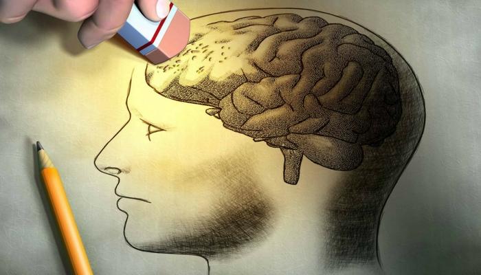creier-minte-psiholog
