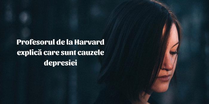cauza-depresiei-profesor-harvard
